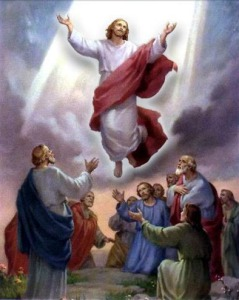 ascensionofjesus495